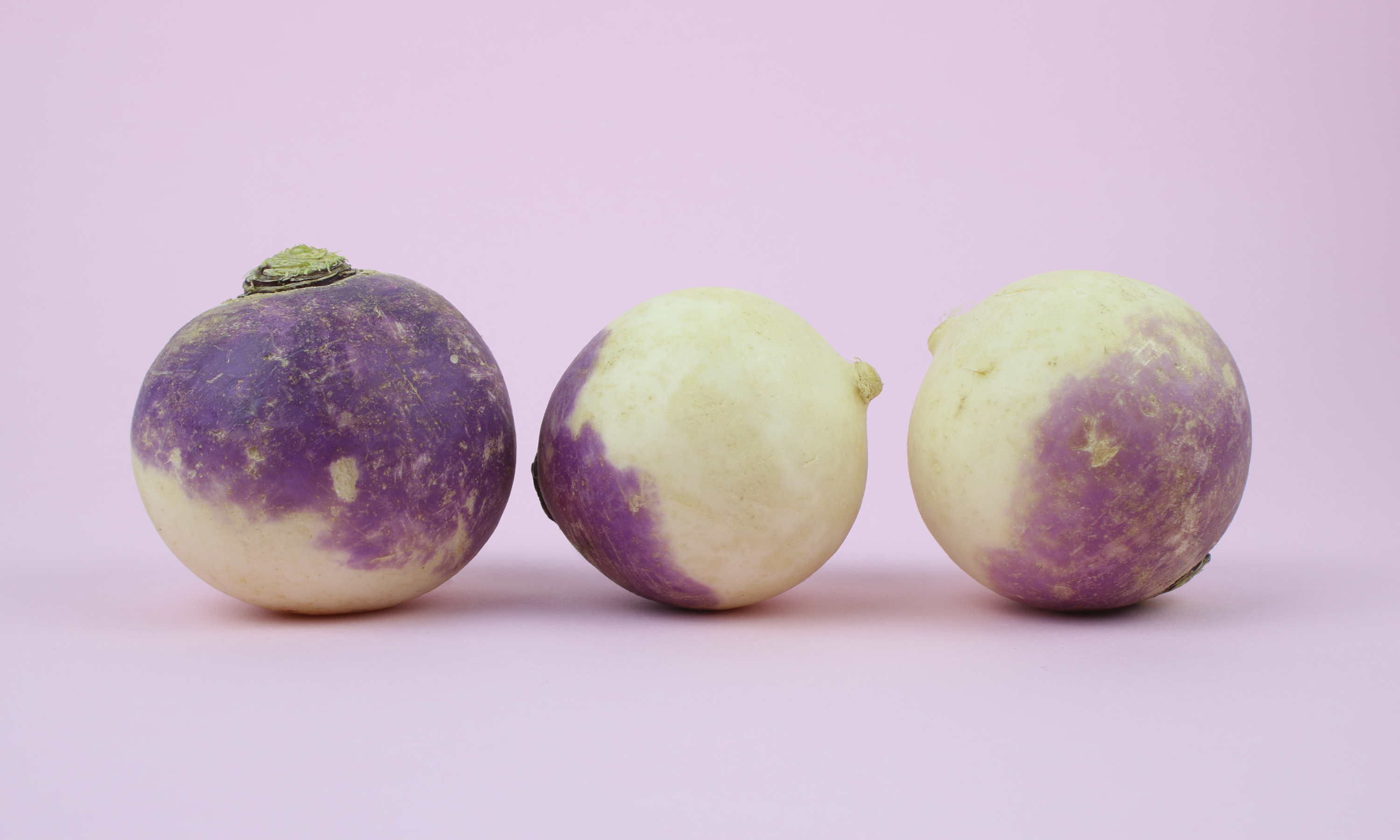 pickled-turnips-branding-turnips-photo-rather-splendid